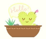 Pot avec le cactus Images stock