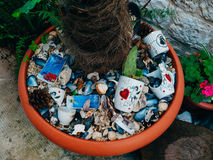 Pot avec le palmier, les coquillages et les petits groupes de mer image libre de droits