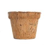 Pot biodégradable d'usine Image libre de droits