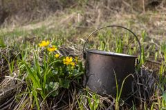 The pot blackened by soot lies on the grass near the yellow flowers. A blackened from soot bucket stands on the grass with meadow flowers royalty free stock photo