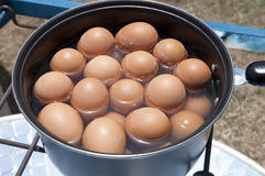 Pot of boiling water cook eggs Royalty Free Stock Image