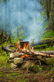 The pot on the bonfire in the camp in the coniferous forest. Stock Image