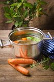 Pot with broth Royalty Free Stock Photo