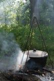 Pot_coals_wood Royalty Free Stock Image