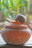 Pot and Coconut shell. Pot Coconut shell and Container north thai Stock Image