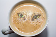 Pot of coffee is watching you Royalty Free Stock Photo