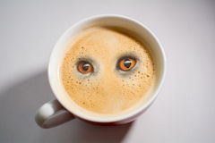 Pot of coffee is watching you Stock Image
