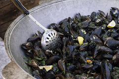 Pot of cooked mussels with skimmer Stock Photos