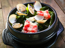 Pot d'algue avec le feston et le boeuf Photographie stock
