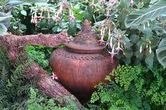 Pot d'argile caché sous les fleurs dans un jardin Image stock