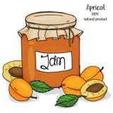 Pot de confiture d'abricot et d'abricots mûrs frais Illustration de vecteur dans le style de croquis photos stock