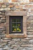 Pot de fleur avec les fleurs jaunes derrière la fenêtre d'une maison belge en pierre, dans Reuland, burg-Reuland photographie stock libre de droits