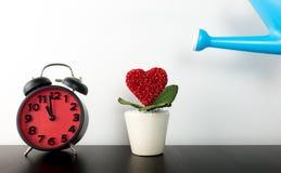 Pot de fleur de arrosage d'amour avec la synchronisation d'horloge, Images stock