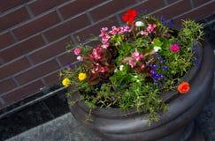 Pot de fleur de rue Photographie stock libre de droits