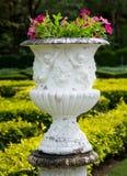 Pot de fleurs Photo libre de droits