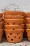 Pot de fleurs Images stock