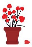 Pot de fleurs avec amour Images stock