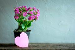 pot de fleurs avec la note de papier de coeur sur la table en bois, backg moderne d'amour Image stock
