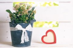 Pot de fleurs avec le ruban et un coeur rouge Photos libres de droits