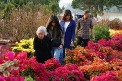 Pot de fleurs bien choisi de personnes au marché d'agriculteur d'air ouvert Photographie stock libre de droits