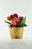 Pot de fleurs et et boîte-cadeau sur le fond blanc Photographie stock libre de droits