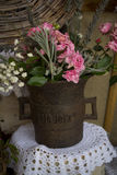 Pot de fleurs unique Images libres de droits