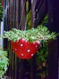 Pot de fraise sur la barrière Image libre de droits