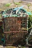 Pot de homard Image libre de droits