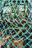 Pot de homard, détail Image libre de droits