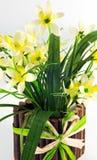 POT dei fiori gialli del daffodil Immagini Stock Libere da Diritti