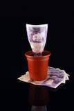 POT dei soldi sulla pila Immagine Stock