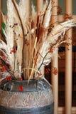 POT delle piante secche Fotografia Stock Libera da Diritti