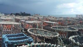 POT di aragosta a Brighton Fotografia Stock