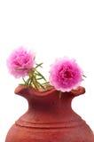 POT di fiore immagini stock
