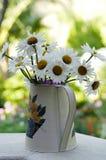 POT di fiore Fotografie Stock Libere da Diritti