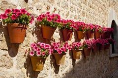 POT di fiore d'attaccatura fotografie stock