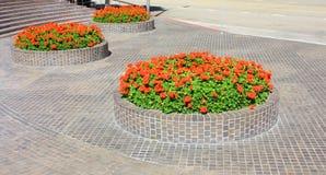 POT di fiore del mattone Immagine Stock