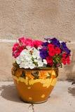 POT di fiore francese Immagine Stock Libera da Diritti