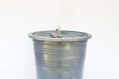 Pot Royalty Free Stock Photography