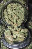 Pot en verre complètement de bourgeons de marijuana se renversant  Photo stock