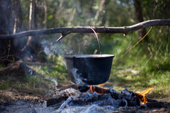 Pot on a fire. In the forest Royalty Free Stock Photography