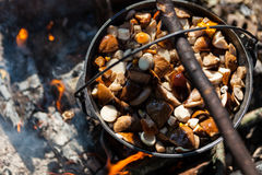 Pot on the fire Stock Photography