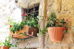 Pot of flowers adorn the walls of the house Stock Images