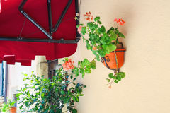 Pot of flowers adorn the walls of the house Royalty Free Stock Photography