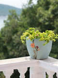 A pot of flowers on the balcony balustrade with a beautiful view Royalty Free Stock Photo