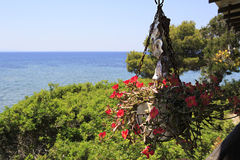 Pot of flowers on front porch on a background of Aegean Sea. Stock Photography