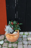 The pot with flowers standing on the brick floor Royalty Free Stock Images