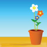 Pot flowers vector illustration Royalty Free Stock Images