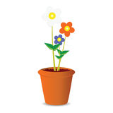 Pot flowers vector illustration Stock Photos