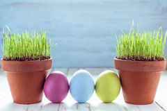 Pot with fresh grass and easter eggs painted in pastel color Royalty Free Stock Photography